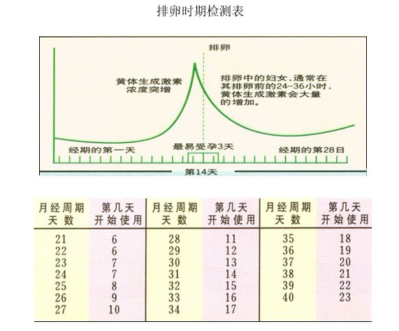 女性排卵时期检测表